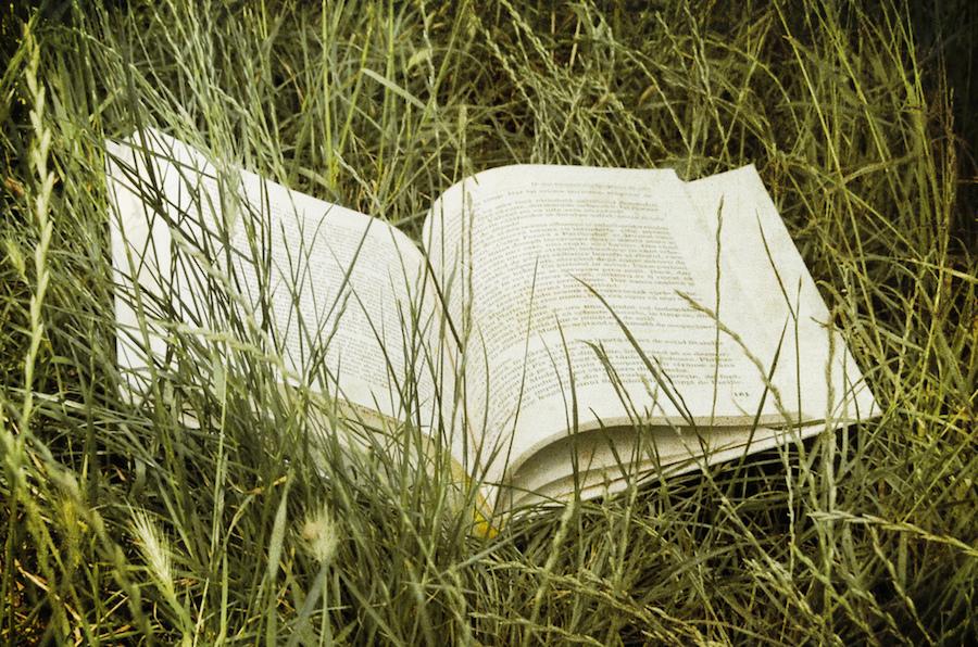 Book of Kells Hay Festival Literary Travel