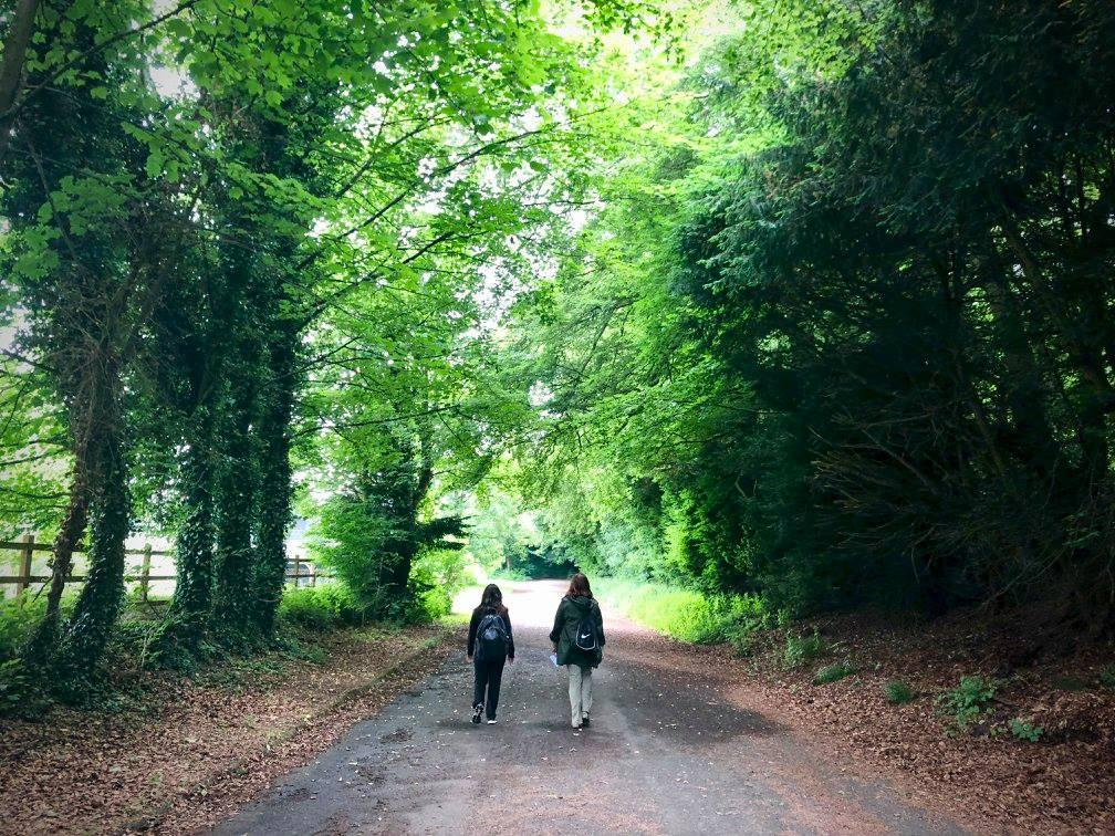 Marlene and Hayley mirror the path Jane embarked on with her sister.
